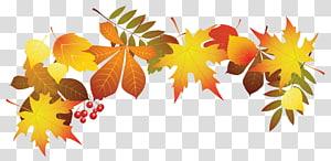 illustration de feuilles marron, couleur de la feuille d'automne, décoration de feuilles d'automne png
