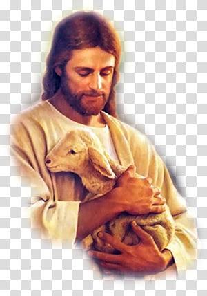 Illustration de Jésus Christ agneau de Dieu, Jésus Bible Christianisme Fils de Dieu, pasteur png