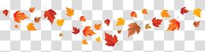 feuille d'érable orange, couleur de la feuille d'automne couleur de la feuille d'automne feuille d'érable rouge, feuille d'automne png