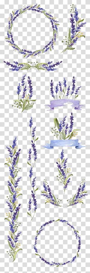 Peinture aquarelle Flower Art Lavender, fleurs peintes à la main, décoration florale pourpre et verte collage png