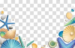 illustration de coquillages bleus, jaunes et verts, étoile de mer Euclidienne, coquillages décoratifs png