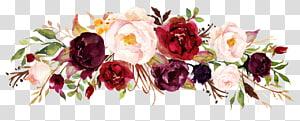Vin floral design fleur Marsala, carte de fleur du soleil sans boucle, illustration de fleurs blanches, rouges et violettes png