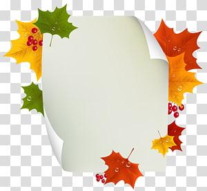 illustration de feuilles de couleurs assorties, automne, décor de page vierge d'automne png