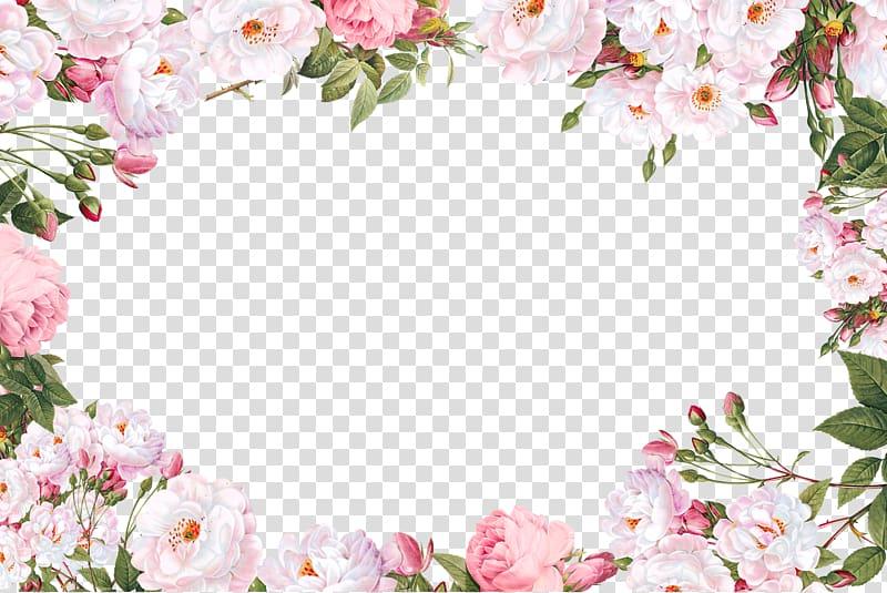 Caractère de script Police de calligraphie sans empattement, bordure de fleurs, illustration de cadre de fleurs pétales blanches png