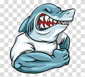 illustration de requin en colère, logo requin mascotte, requins png
