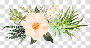 illustration de fleurs pétales rose et vert, invitation de mariage douche nuptiale Plante succulente de douche, belles fleurs Sen Department png