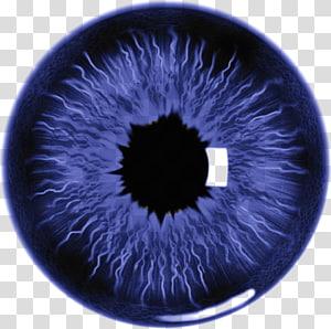 illustration de l'oeil violet et noir, Eye Lens Iris, J png