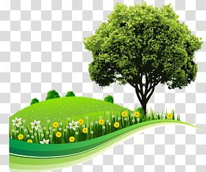 arbre solitaire sur la colline, arbre paysage Nature dessin, enfants fond png