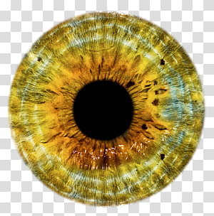 Lentille oculaire, yeux png