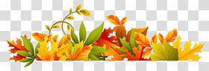 Fichier d'ordinateur automne, fleurs d'automne, frontière, jaune, orange et vert png