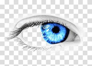 oeil humain droit, icône d'oeil, oeil png