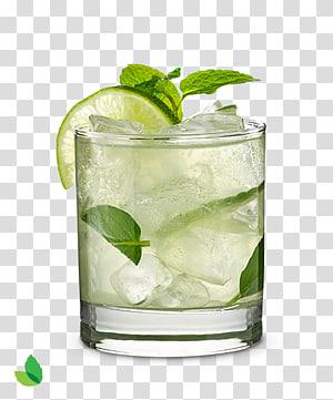 citron dans un verre à boire, Mojito Cocktail Rum Margarita Truffe au chocolat, Mojito png