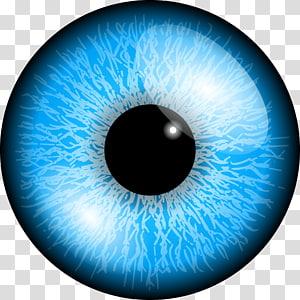 Couleur des yeux Bleu, yeux png