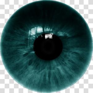 humain œil vert, lentilles cornéennes à œil humain Iris, LENS png