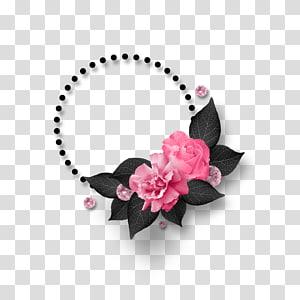 Cadre circulaire, rose rose png