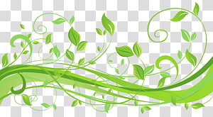 illustration graphique feuille verte,, décoration de printemps avec des feuilles png