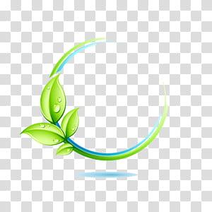 Logo Green Leaf, bordure de feuilles vertes, illustration de la feuille verte png