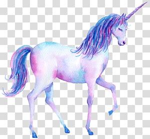 peinture de Licorne, Licorne Aquarelle, Peinture Illustration Affiche, Licorne Aquarelle peinte à la main png