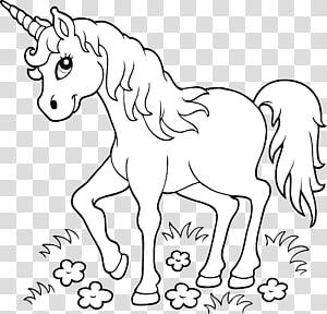 Oeuvre de licorne blanche, livre de coloriage Licorne page enfant, licorne png