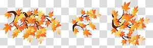 illustration feuilles d'érable, branche d'automne, branches d'automne avec des feuilles png