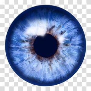illustration pour les yeux, Eye Iris, Blue Eye 3B png