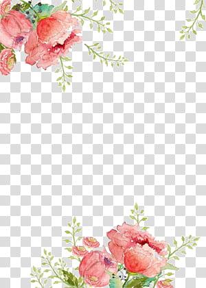 Aquarelle de fleurs en papier, fond de fleurs, peinture florale rose png