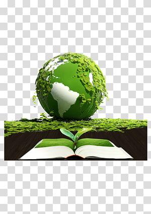 Terre Protection de l'environnement Environnement naturel Respectueux de l'environnement, Terre verte png