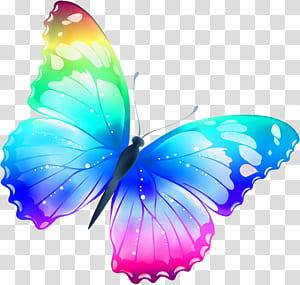 Papillon, illustration de papillons multicolores de grande taille, bleu, violet et jaune png