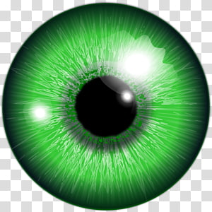 iris des yeux verts, Couleur des yeux png