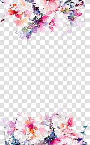 Papier fleurs iPhone 5s, bordure de fleurs aquarelle, fleurs roses sur fond blanc png