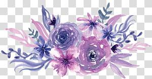 Peinture aquarelle Fleur pourpre, aquarelle fleurs violettes, illustration de fleurs violettes et roses png