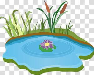 étang et herbe illustration, contenu gratuit lac, fichier lac png