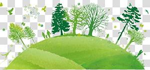 arbres et oiseaux, Génie de l'environnement Environnement naturel Pollution Environmentalisme, Terre verte png