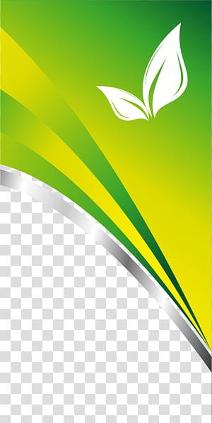 art de la frontière verte et blanche, carte de visite carte de visite, conception de carte de visite à la mode png