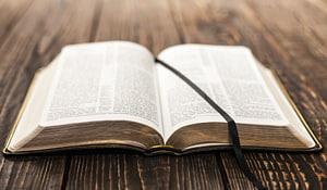 Étude biblique Christianisme Texte religieux Église chrétienne, sainte bible png