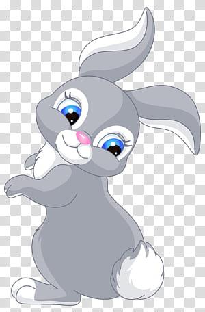 Dessin animé lapin de Pâques, dessin animé mignon lapin, illustration de dessin animé lapin gris et blanc png