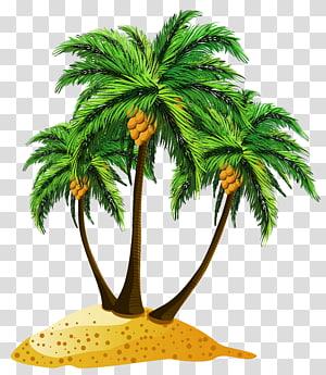 Cartoon Island Illustration, Beach Palms Decor, illustration de trois arbres de noix de coco vert png