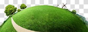 pommier sur le terrain avec gazon, Affiche Protection de l'environnement, Terre verte png