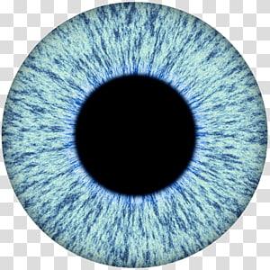 illustration de globe oculaire bleu et noir, œil humain iris élève, yeux png