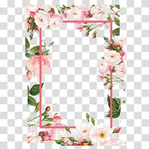 Fleur, frontières de fleurs roses, illustration de bordure florale rose et verte png