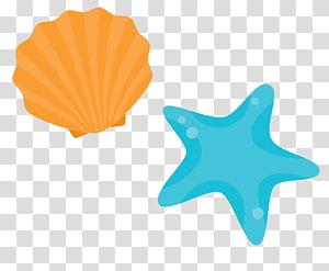 coquille de palourde et illustration de poisson étoiles, Shore Seashell Beach, coquille d'étoile de mer dessin animé png