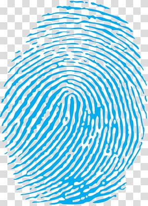 illustration d'empreinte digitale bleue, empreinte digitale, empreinte digitale png