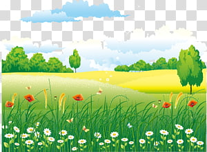 champ d'herbe verte entouré d'arbres illustration, zone rurale euclidienne, paysages naturels png
