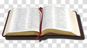 Étude biblique Jean 3:16 Christianisme Prophétie biblique, citations bibliques png
