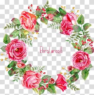 Fleurs roses euclidiennes, joliment, bordure de guirlande de roses peintes, couronne de fleurs rose png
