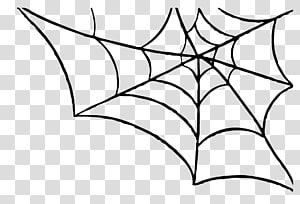 Toile d'araignée, toile d'araignée png