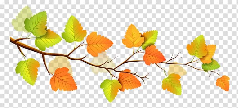 illustration de feuilles jaunes et orange, arbre de branche d'automne, décor de branche d'automne png