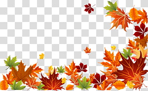 illustration de la bordure des feuilles marron, orange et vert, couleur de la feuille d'automne couleur de la feuille d'automne fond euclidien, feuilles d'automne png