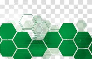 Nutrition Groupe sanguin Manger santé, Documents d'information sur la technologie hexagonale verte, arts numériques hexagonaux verts png
