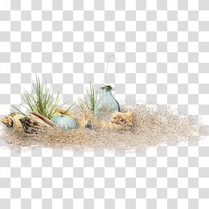 Fichier de Sand Beach, éléments de plage, matériel de plage, bouteille en verre sur sable avec coquillages et herbe png